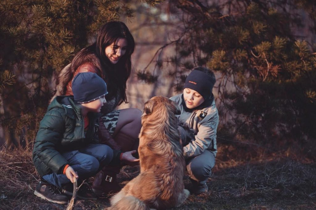 What Does Family Mean To Me?, Essay Writing Guide